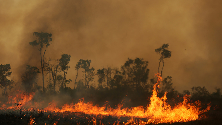 Are the Amazon fires a crime against humanity?